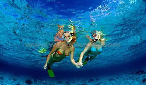Snorkeling South Beach Miami The Best Beaches In World